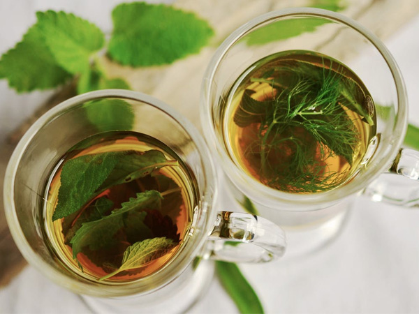 A guide to extracting optimized benefits of Green Tea - Global Fashion Street