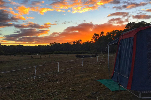 5 Essential Camping Dos and Don'ts in Australia - Global Fashion Street