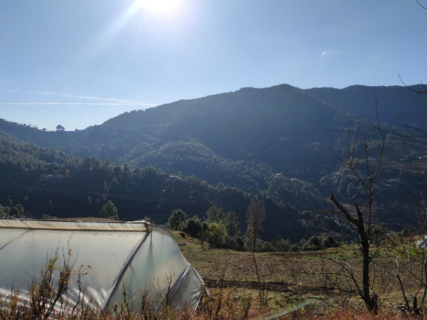 enchanted-hills-resort-mukteshwar-uttarakhand-12